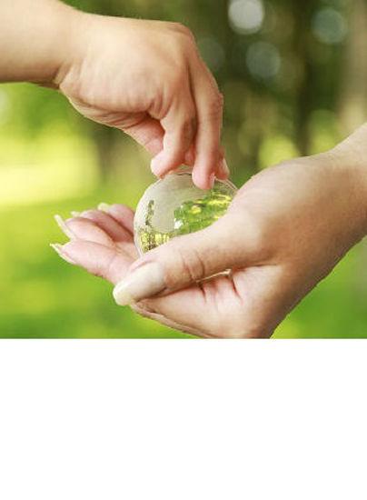 Immagine di Introduzione alla sostenibilità (In House)