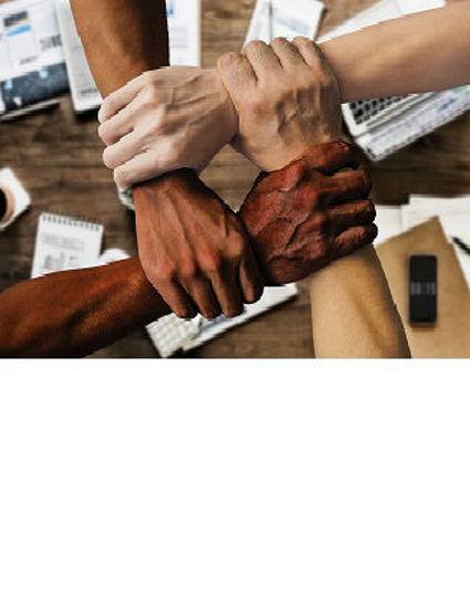 Immagine di Il valore della diversità e la consapevolezza situazionale (Workshop online)